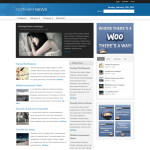 Premium Wordpress Theme Gotham News