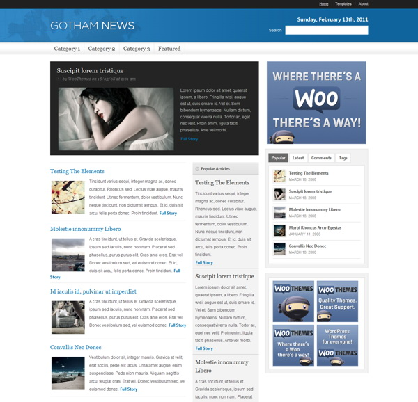 gotham-news-premium-wordpress-theme