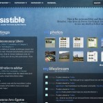 Premium Wordpress Theme Irresistible