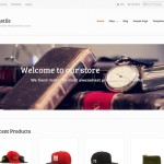 Premium Wordpress Theme Mystile