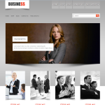 Premium Wordpress Theme Business