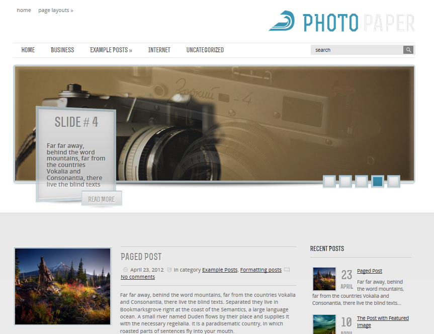 wordpress_theme_photopaper_image