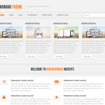 Premium WordPress Theme Hannari