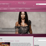 Premium WordPress Theme GirlsBook