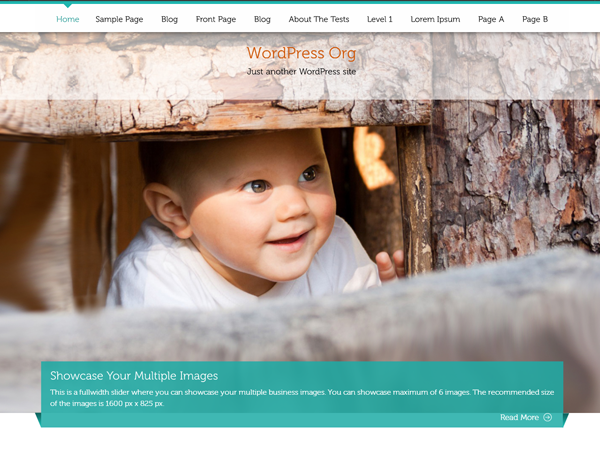 butterBelly-wordpress-theme