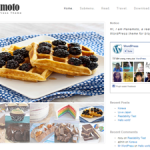 Premium Wordpress Theme Hanamoto