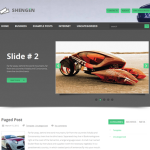 Premium WordPress Theme Shengen